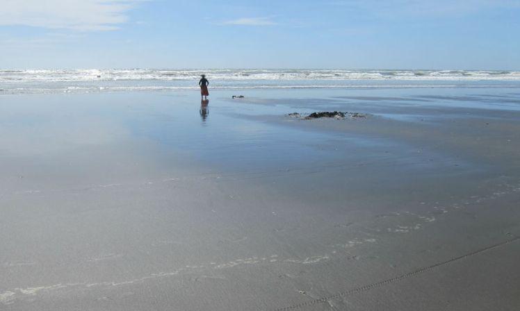 NZ Summer 4