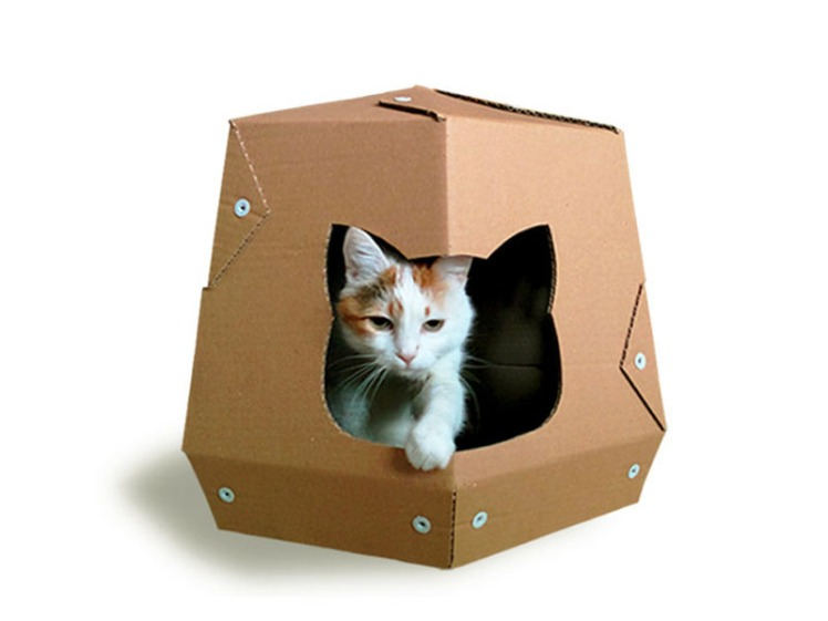 etsy cats5